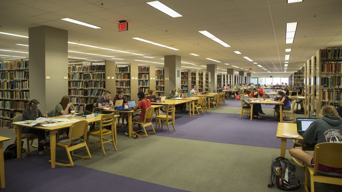 Book stacks and study area